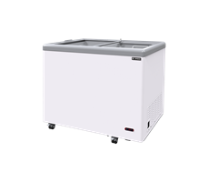 Tủ đông Sanden SNG 0305